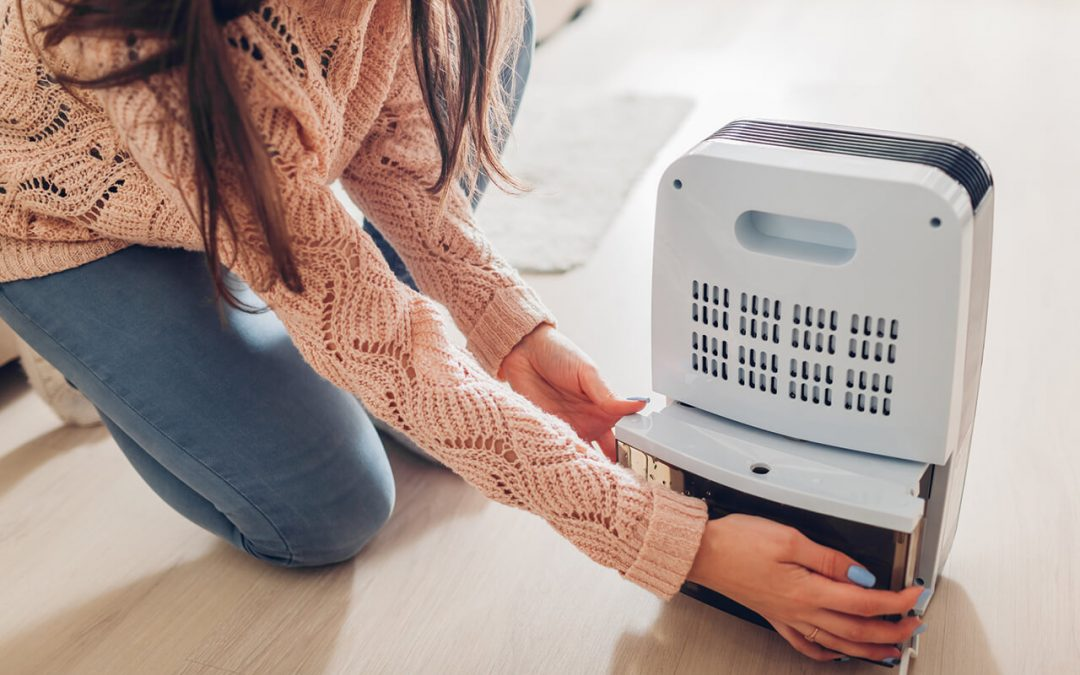 improve air quality in your house
