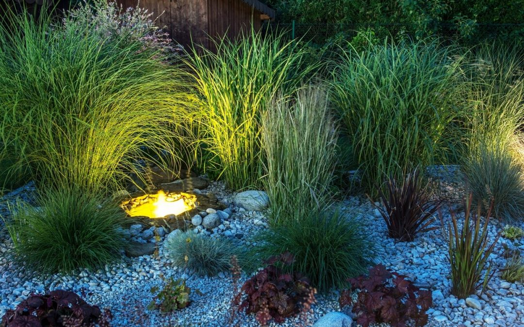 How to Plan Your Landscape Lighting